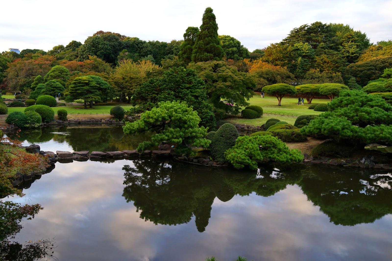 Shinjuku Gyoen japanese gardens