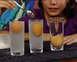 how to make an egg float in saltwater hypothesis