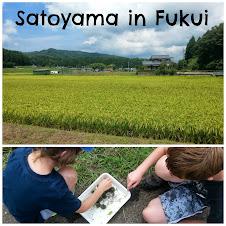 Satoyama in Fukui Prefecture