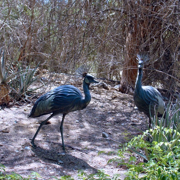 Palm Springs, The Living Desert is home to plenty of wildlife.