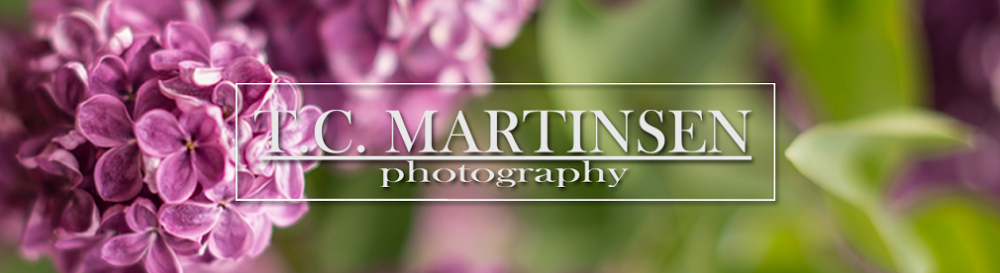 T.C. MARTINSEN Photography