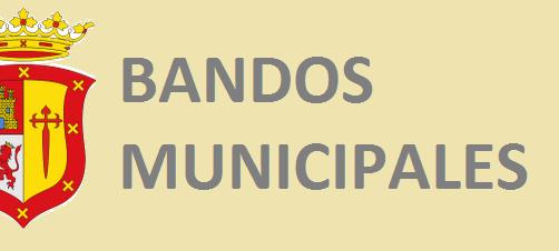 ACCESO DIRECTO A BANDOS MUNICIPALES