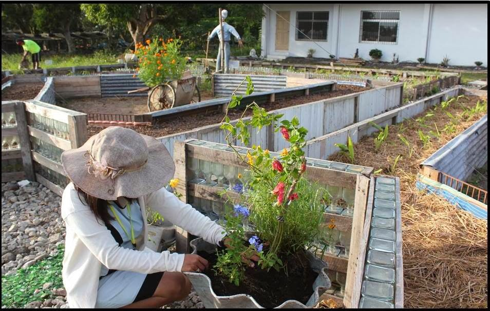 The Philippine Organic Garden Project