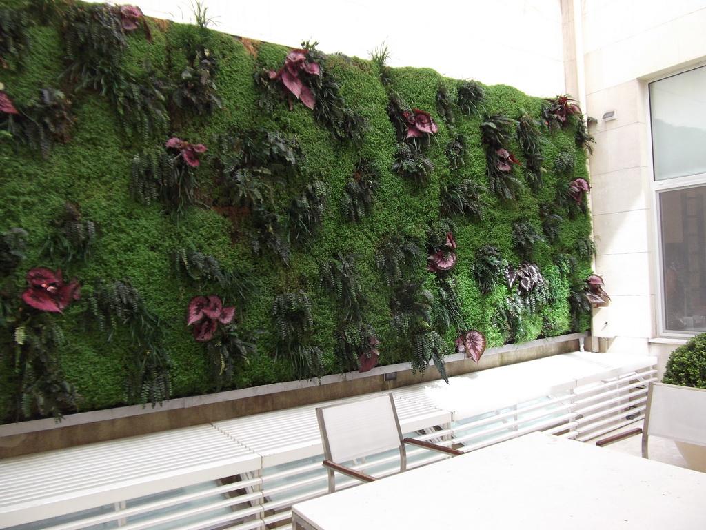 Jardin vertical en argentina recorrida de mantenimiento for Armado de jardines