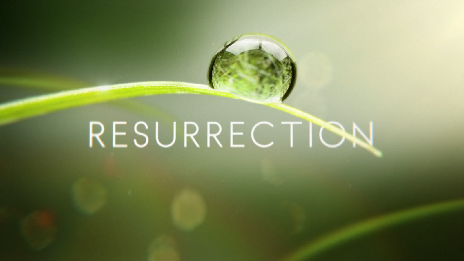 Resurrection (2014) 2x13 V.O. Disponible