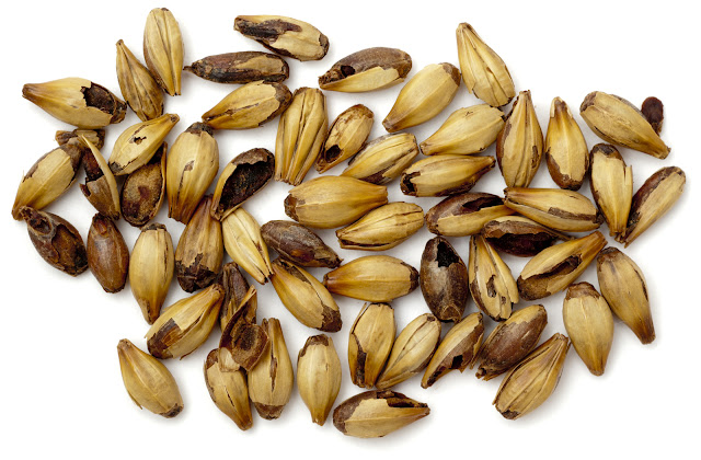 allgrains.blogspot.com - Keen on Crystal Malts - There are not many recipes that do not contain a crystal malt varietal and for good reason! Lacking in enzymes but heavy in unfermentable caramelized sugars, the crystal malt family is not one to ignore.