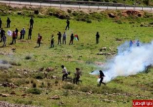 Brasileiros e palestinos são atacados por Israel em Nabi Saleh