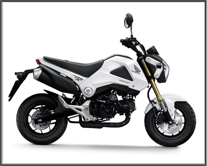 Honda Msx 2013 Price 2900 Motorloy