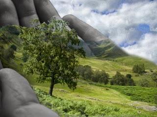 Salvar a natureza é salvar a humanidade