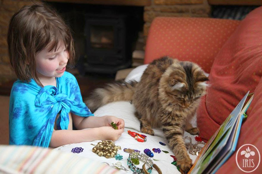 Therapy Cat Pet Cat Aged Care Fake