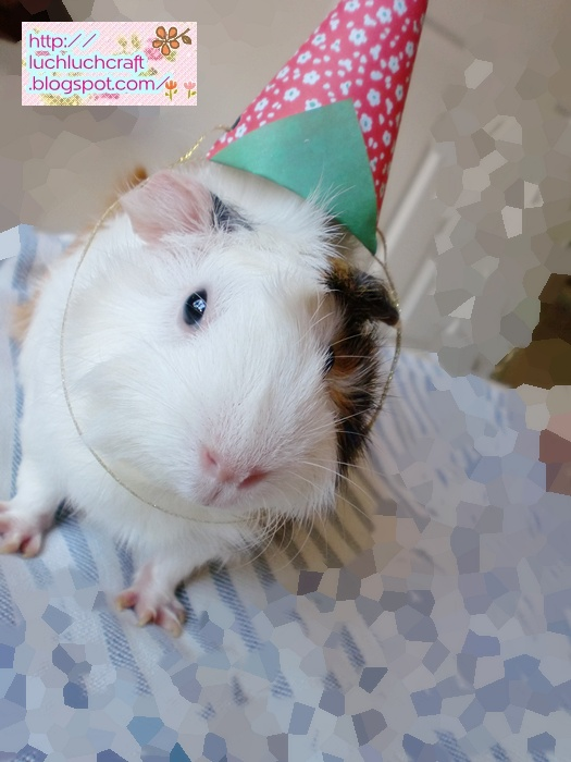 guinea pig hat tutorial
