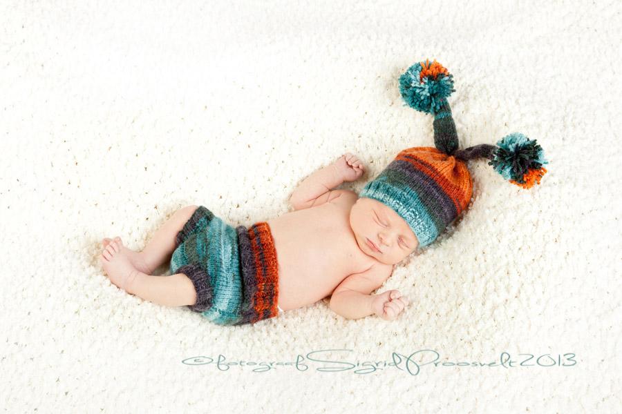 newborn-beebi-beebipildistamine
