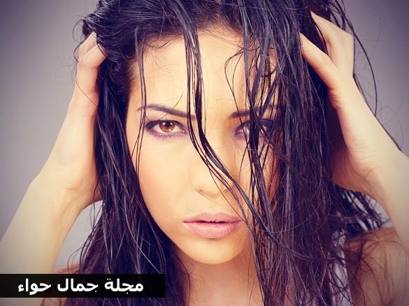3 خلطات فعالة من البيض لتكثيف وتغذية الشعر - تكثيف الشعر - تكثيف وتطويل الشعر - تكثيف الشعر وتطويله - تكثيف الشعر الخفيف - تكثيف الشعر بالحناء - تكثيف الشعر من الأمام - تكثيف الشعر بالبي - تكثيف الشعر بالمايونيز - تكثيف الشعر بزيت الخروع - تكثيف الشعر بسرعة - تكثيف الشعر بسرعة فائقة - كثافة الشعر - كثافة الشعر من الأمام - كثافة الشعر مجرب - كثافة الشعر بسرعة - كثافة الشعر وتطويله - كثافة الشعر الخفيف.