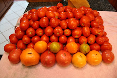 Home Grown Maters