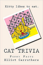 Cat Trivia - Book on Amazon