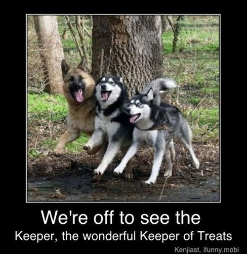 To The Wonderful Keeper Of Treats