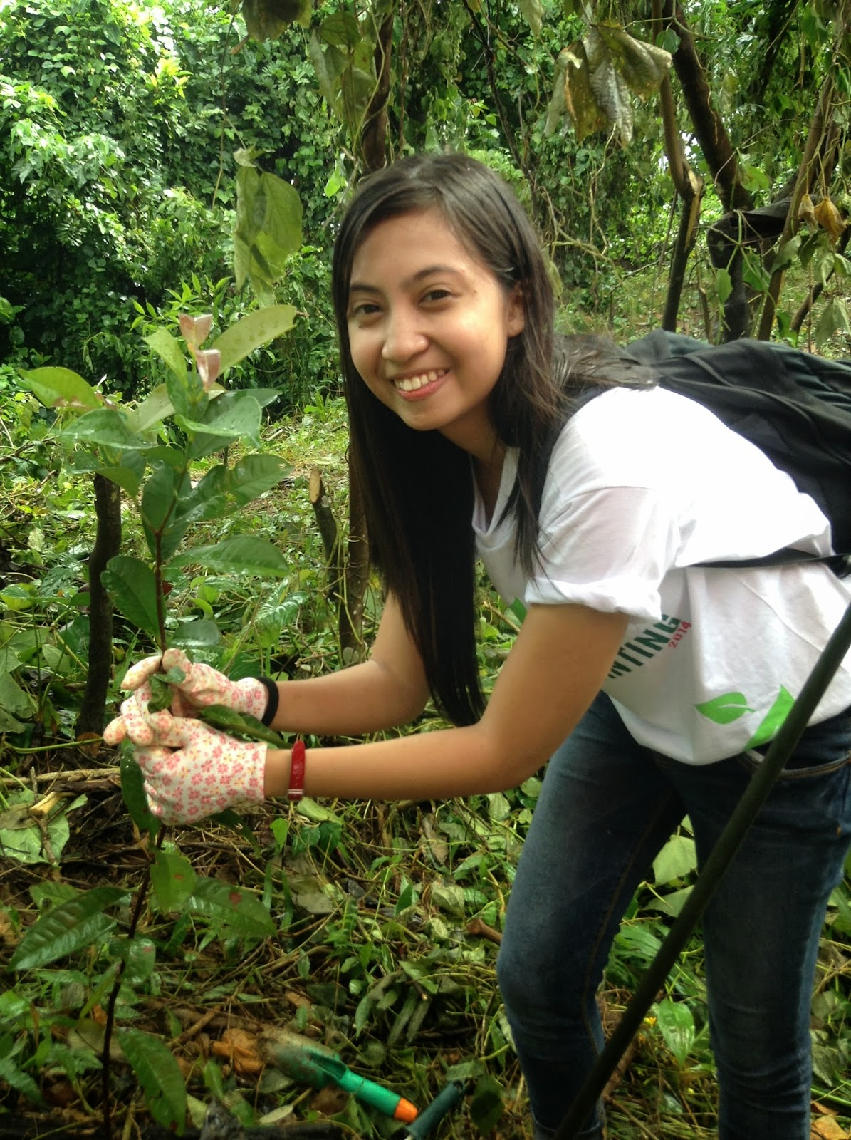 Philweb Tree Planting, Haribon Foundation