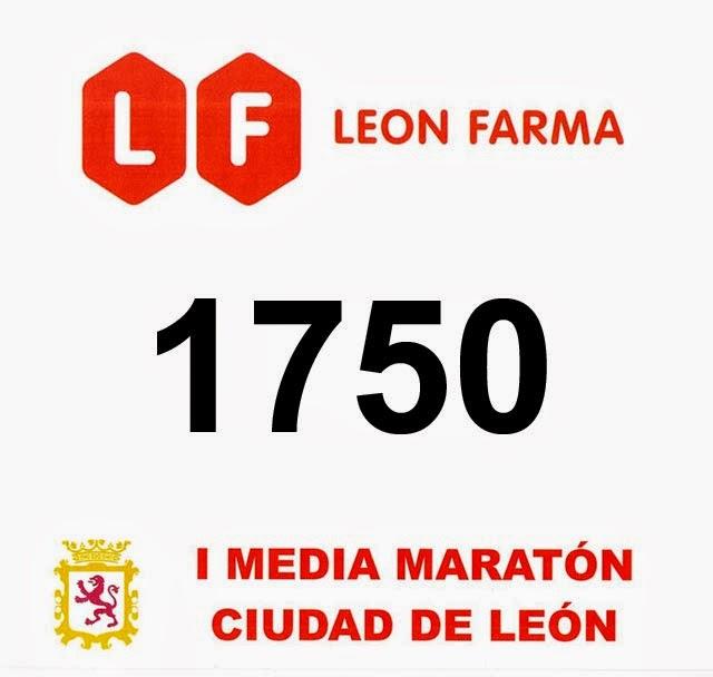 dorsal media maraton leon