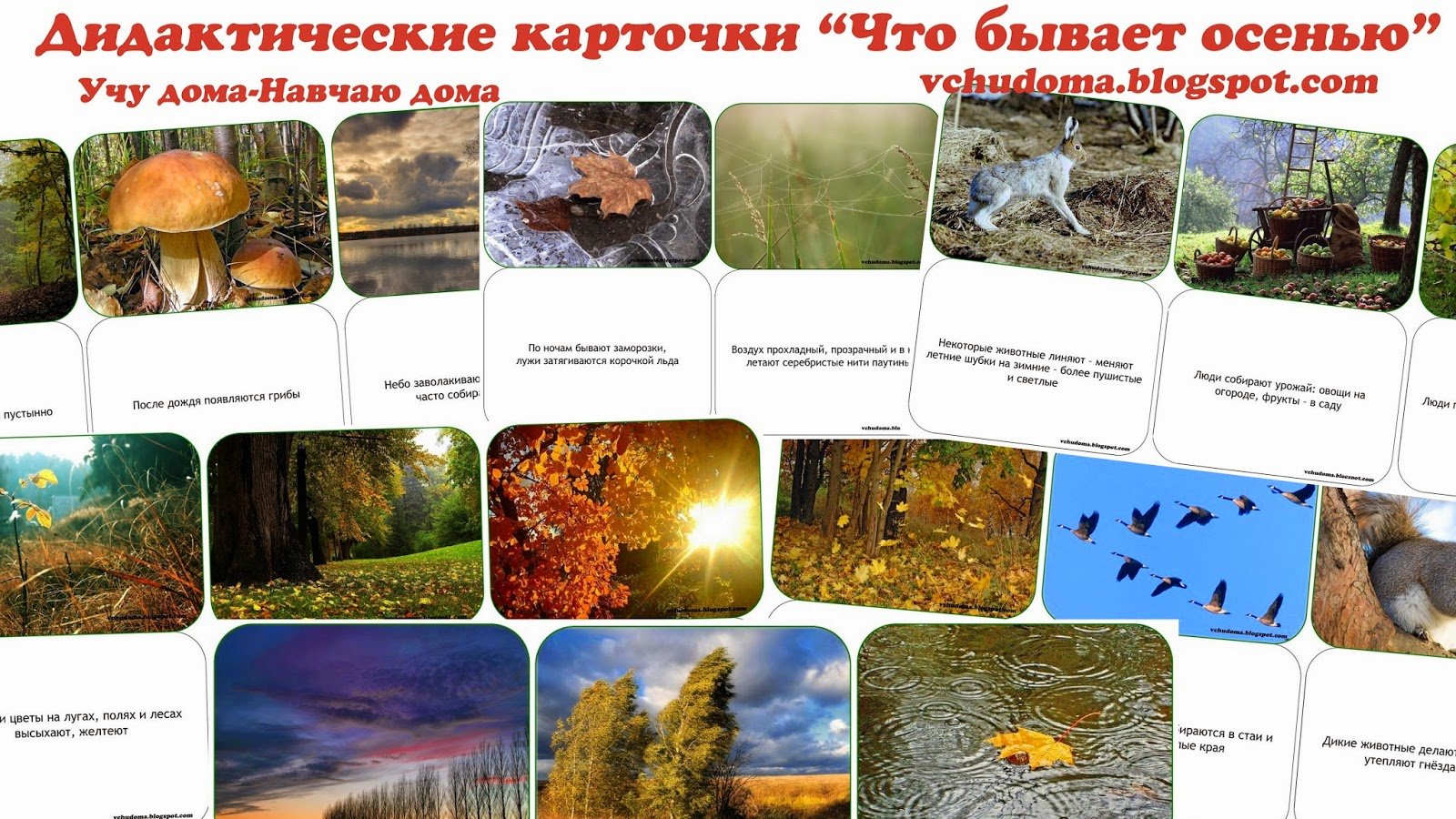 Дидактические картинки труд в природе осенью бесплатно