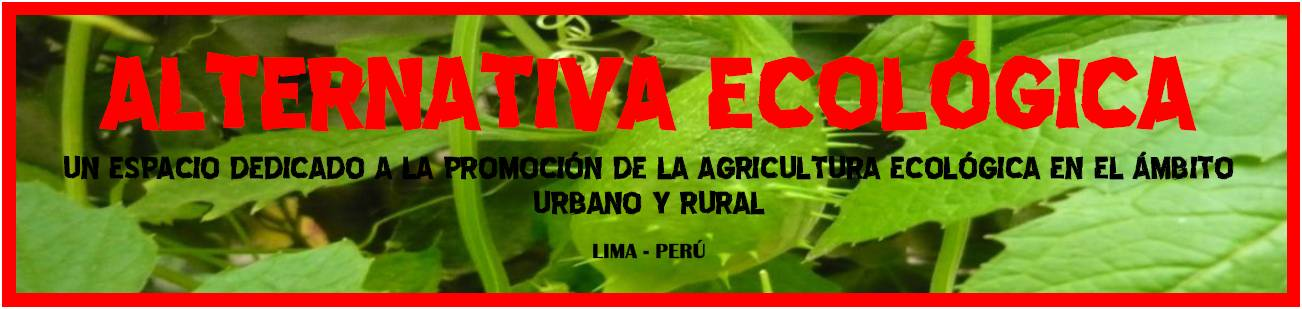 ALTERNATIVA ECOLGICA