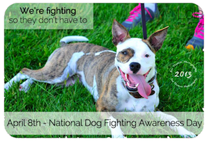 http://dogsnpawz.com/national-dog-fighting-awareness-day-adopt-a-pit-bull/