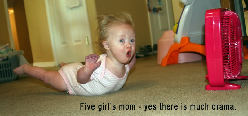 Five girl's mom - yes, there is much drama!