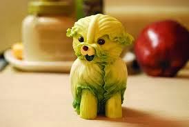 cabbage-dog