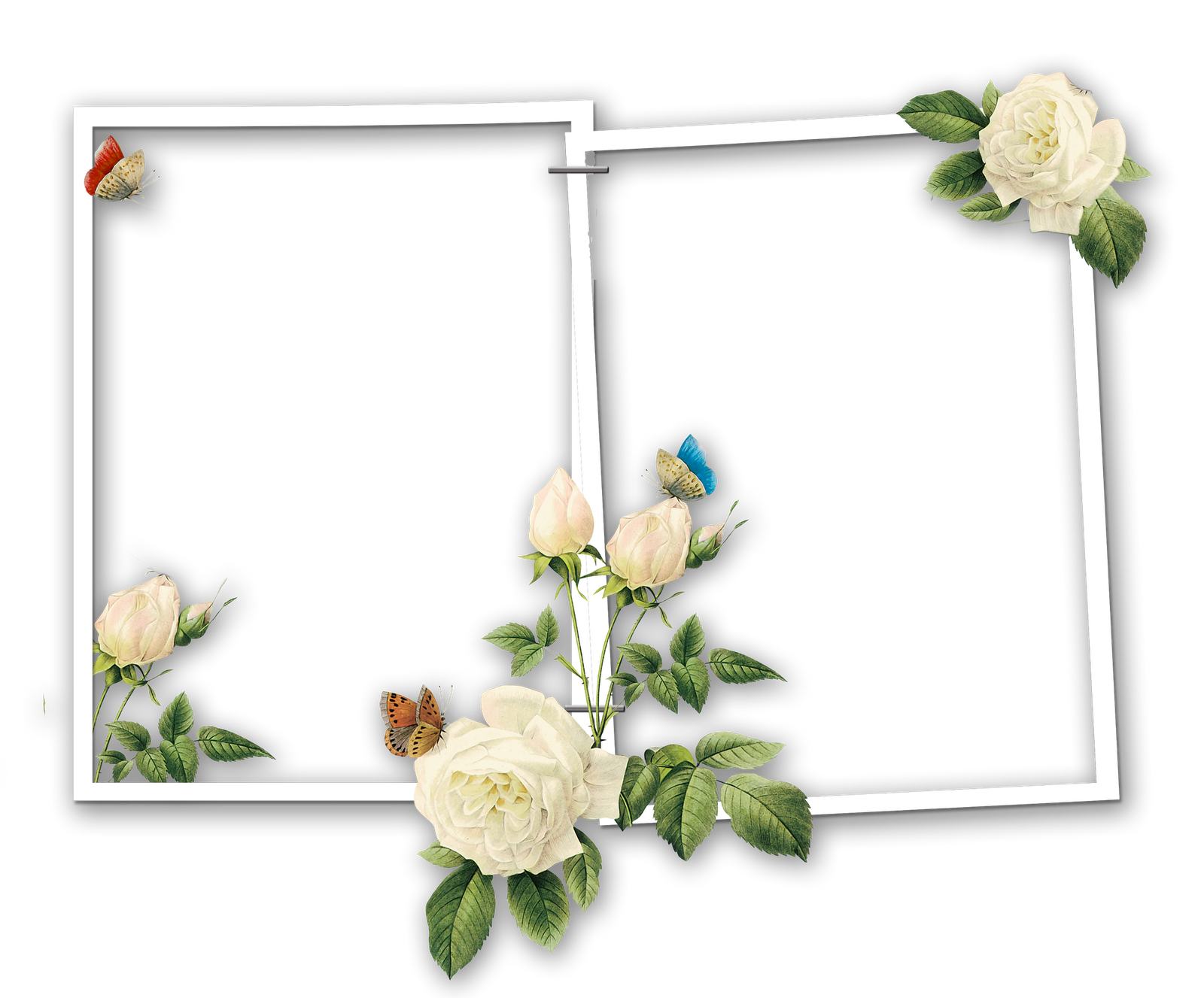 Marcos gratis para fotos marcos florales para fotos - Marcos para fotos economicos ...