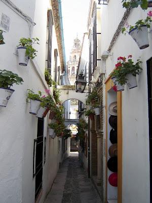 Viaggio a Cordoba, Andalucia