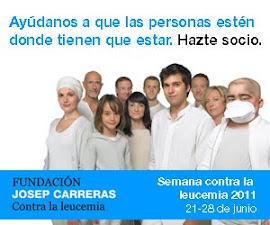 Colaboramos con la fundación Josep Carreras