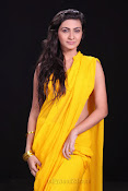 Neelam Upadhyay photos in Yellow saree from Action-thumbnail-4