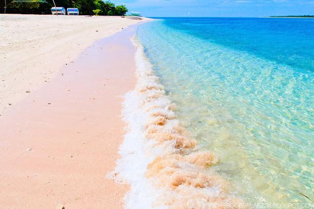 The World S Most Pristine Pink Sand Beach Santa Cruz