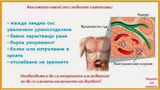 http://nehtataotjivota.blogspot.com/