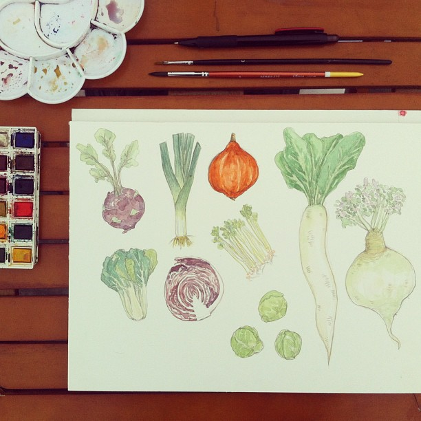 watercolour painting of macrobiotic veggies, radish, leeks, kohlrabi