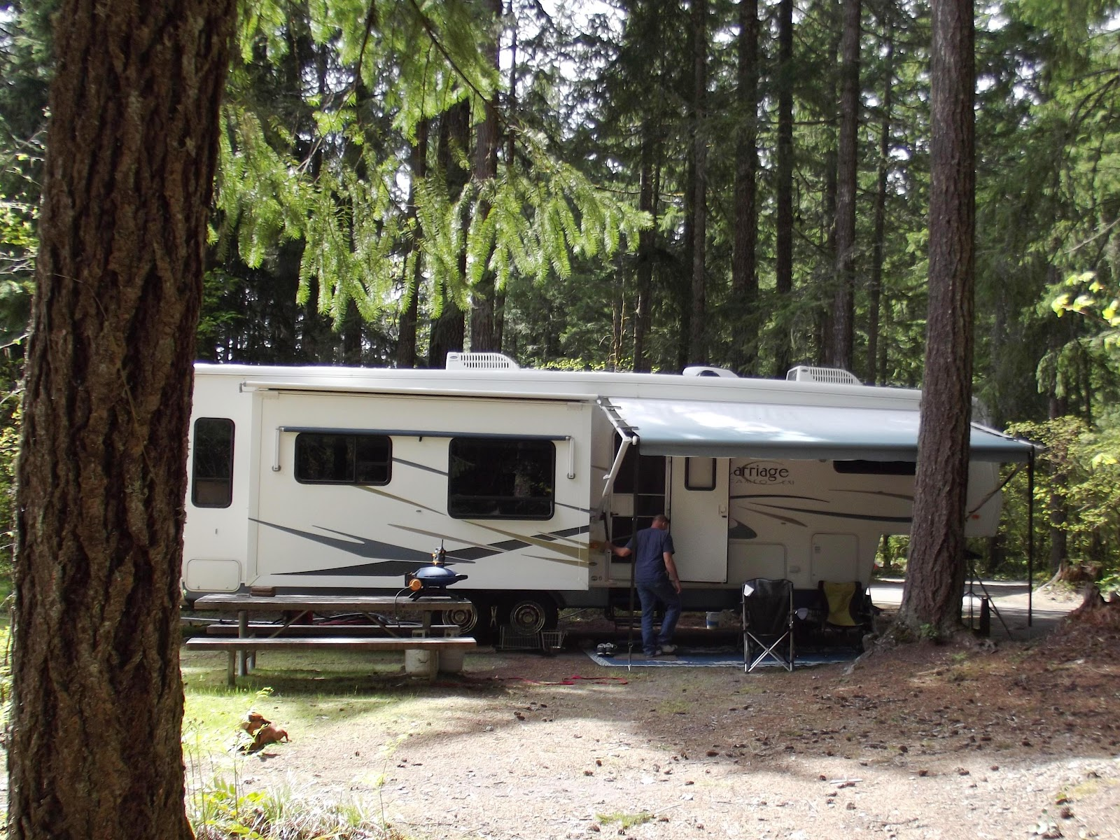 Our Cabin In The Woods For Summer We Are Surrounded By Towering Fir Trees Swift Forest Is A Campground Not An RV Resort There No Hook Ups