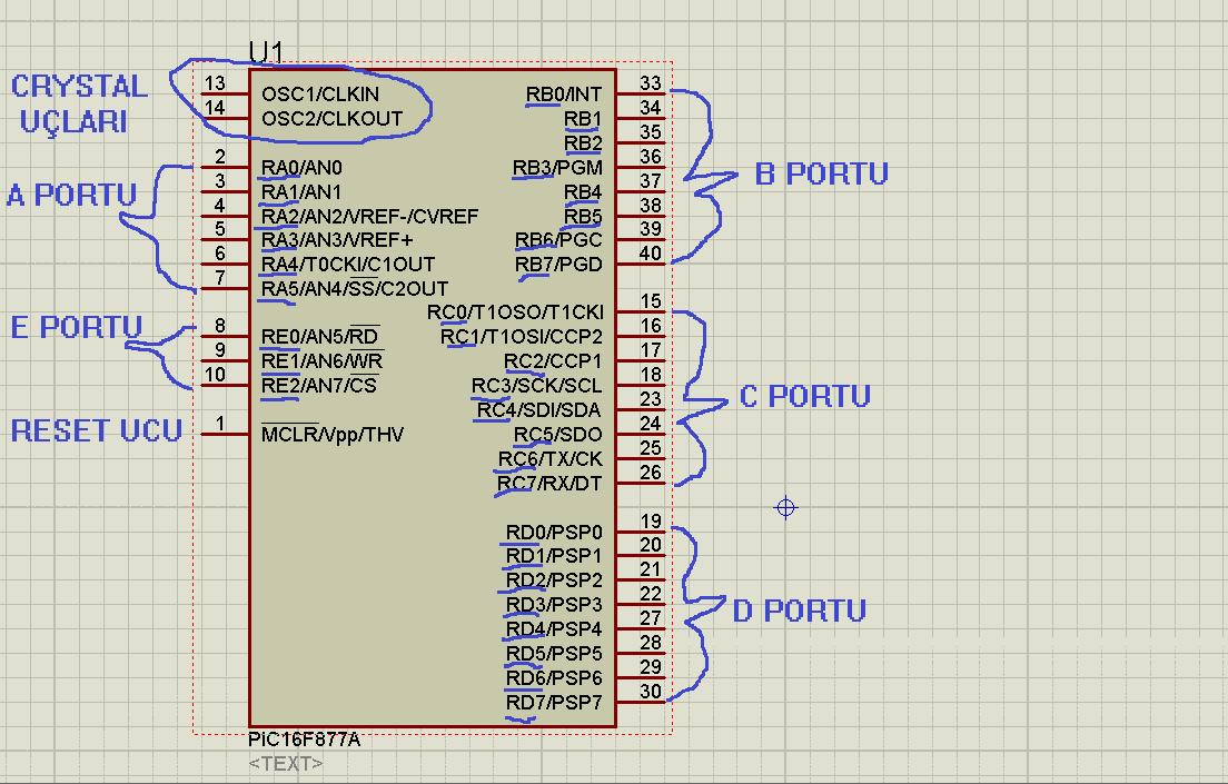 Port her pic ve entegreler in pinler den oluşan belirli gurupları