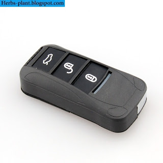 Kia k9 car 2013 key - صور مفاتيح سيارة كيا k9 2013