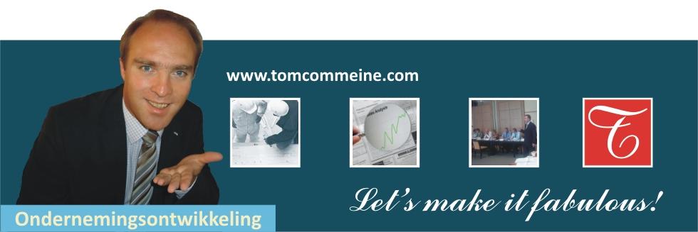 Ondernemingsontwikkeling | Tom Commeine