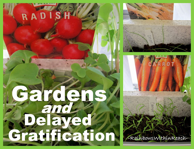 photo of: gardens and delayed gratification, planting seeds with children