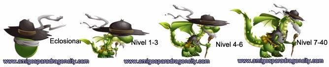 imagen de los niveles de crecimiento del dragon ciego