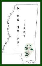 MISSISSIPPI 1st FACTS