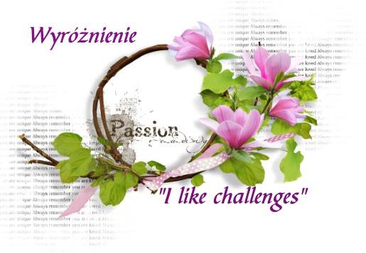 I like challenges