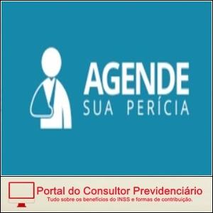 Agendar Perícia de Auxílio-doença no Site do INSS.