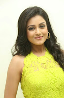 Actress Mishti Chakraborty Picture Gallery in Long Dress at Chinnadana Nee Kosam Audio Launch freshgallery.in3.jpg