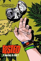 FESTED A Journey to Fest 7 (2010) DVDRip 400MB
