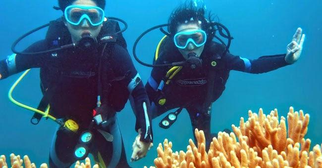 Lặn biển ngắm san hô tại cù lao Chàm và bán đảo Sơn Trà