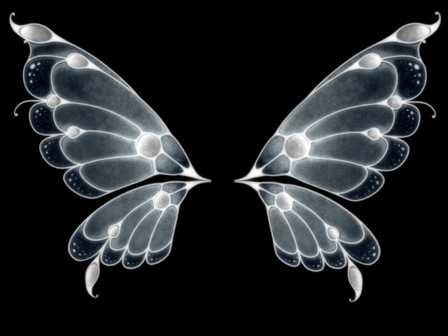 Fantasy butterfly wings - photo#28