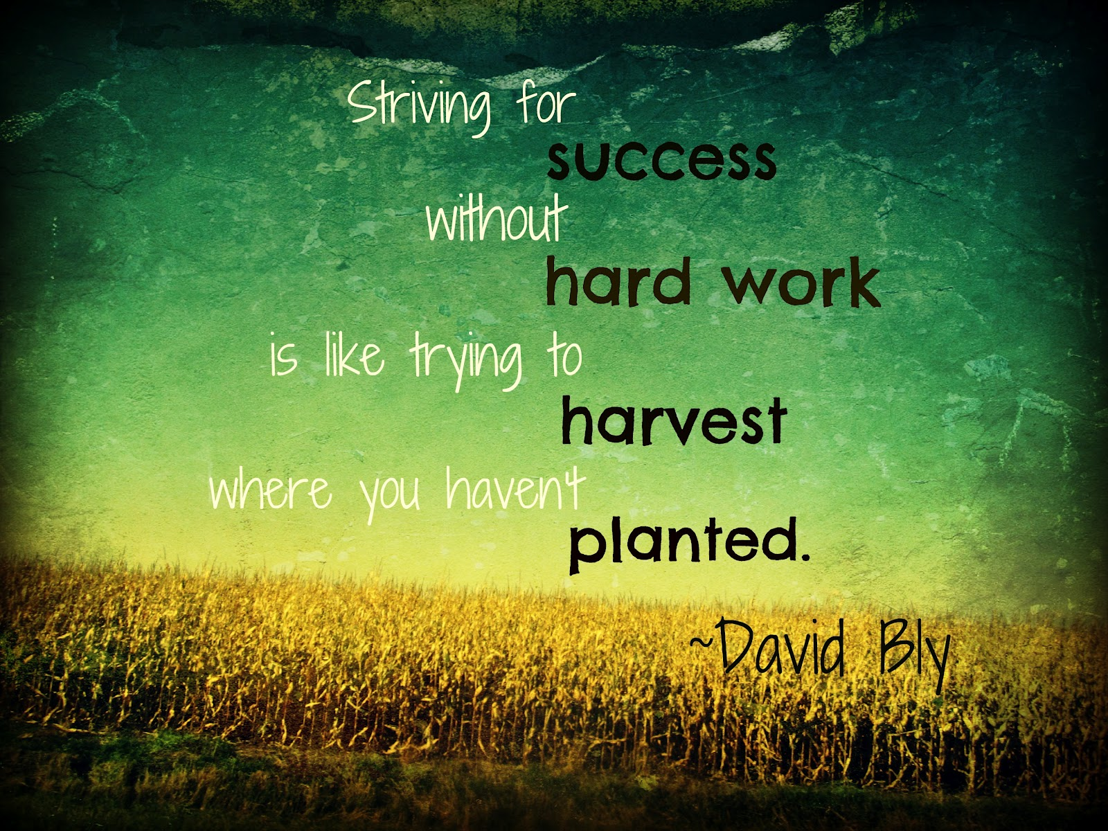 Great Quotes About Life Think Quotes It's Friday Harvest Of Hard Work  Life Love And
