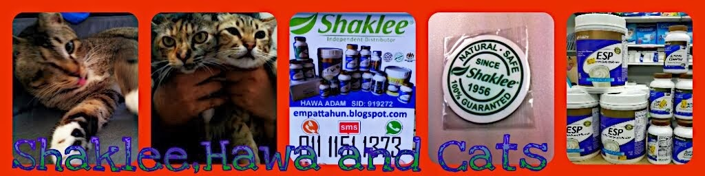 Shaklee, Hawa and Cats