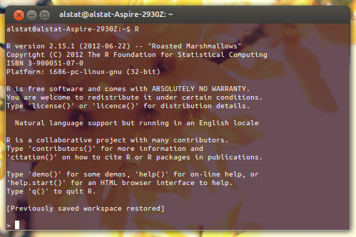 R: Download and Installation in Ubuntu
